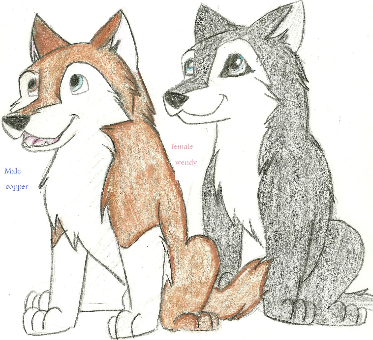 Deadline for this contest   March 31  2010Cute Husky Puppy Drawings
