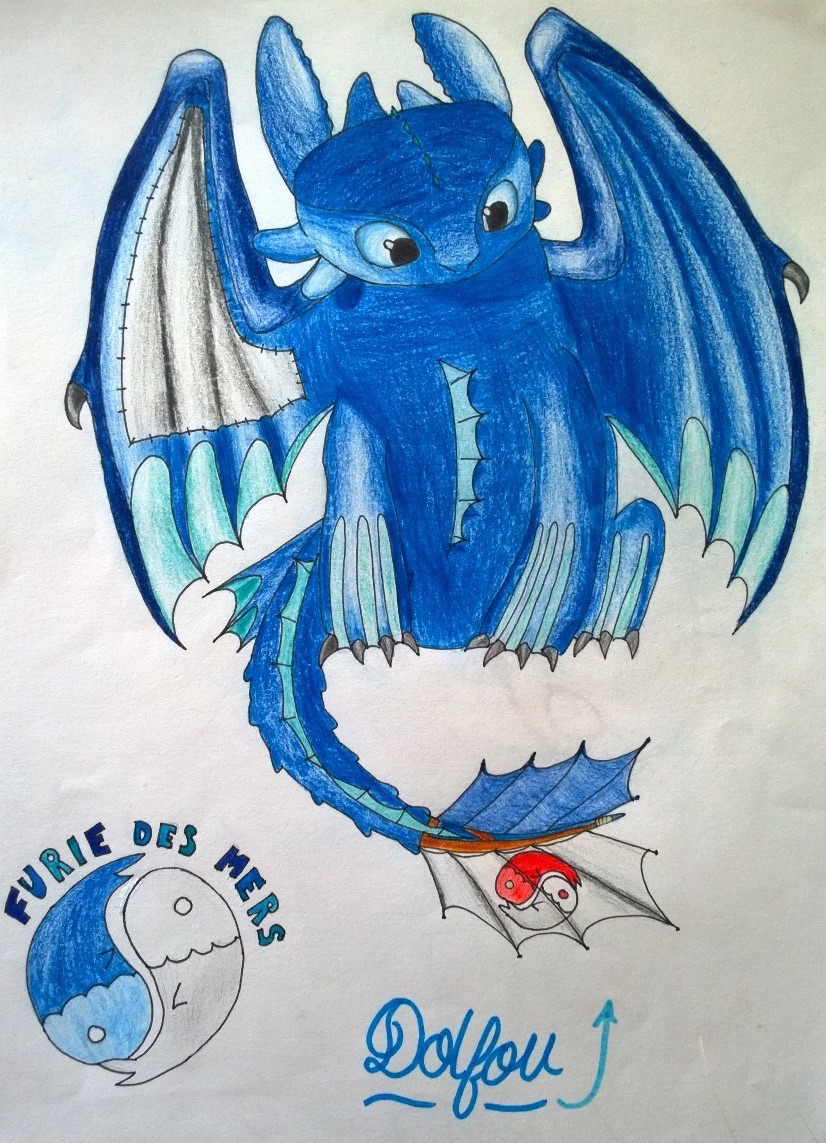 Dolfou dragons - Dragons furie nocturne ...
