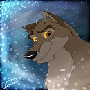 Balto Icon