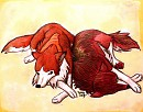 Trade With Artic Wolf - Dog Tired
