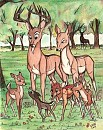 'Wha . . What a lot of fawns, sister!'