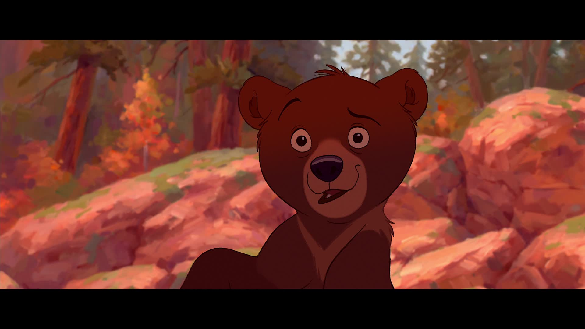 Think, Brother bear fuck