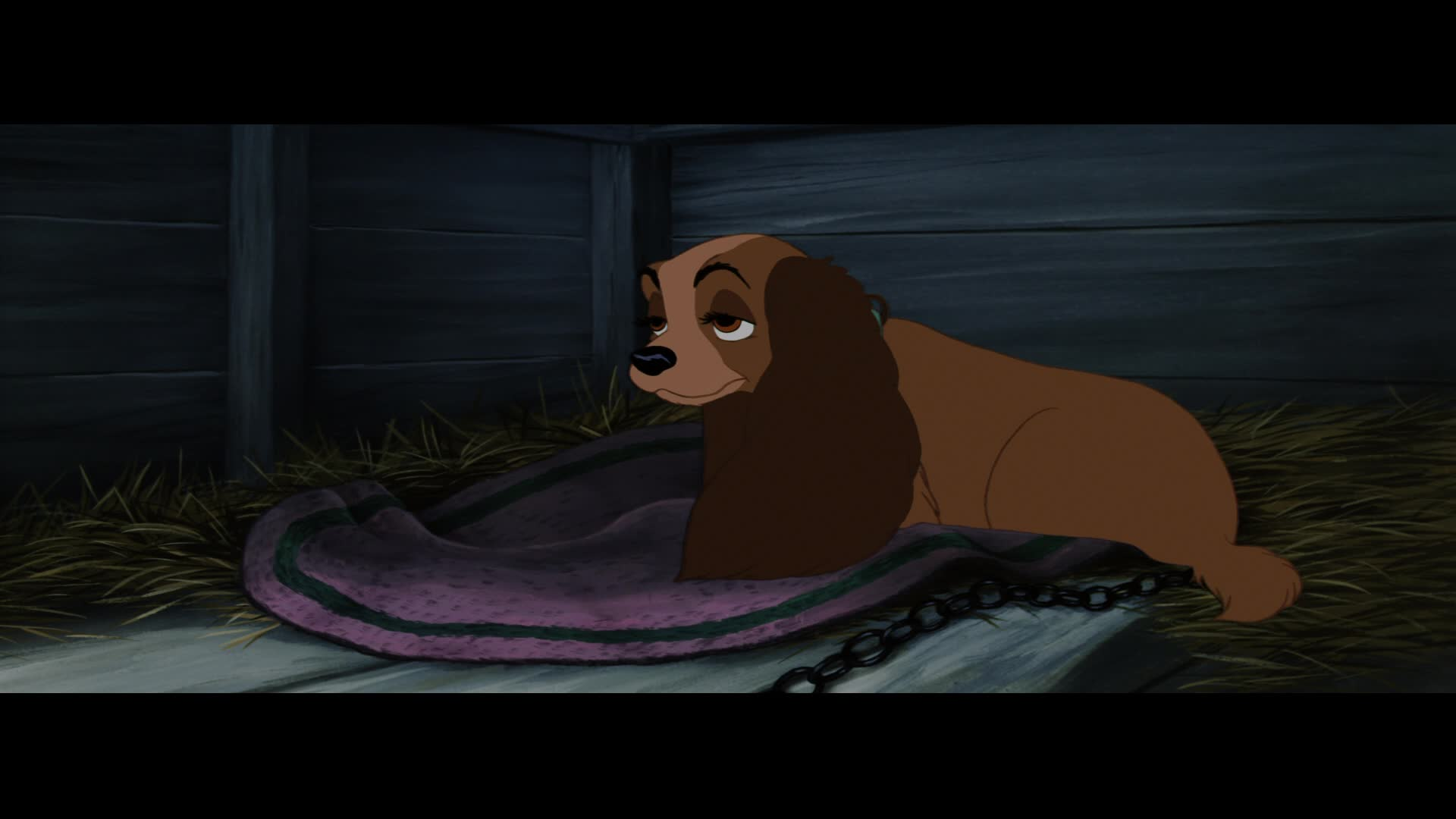 opinions on the lady and the tramp  u00a9 lady  u0026 the tramp