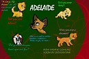 ''Adelaide'' Cover Picture