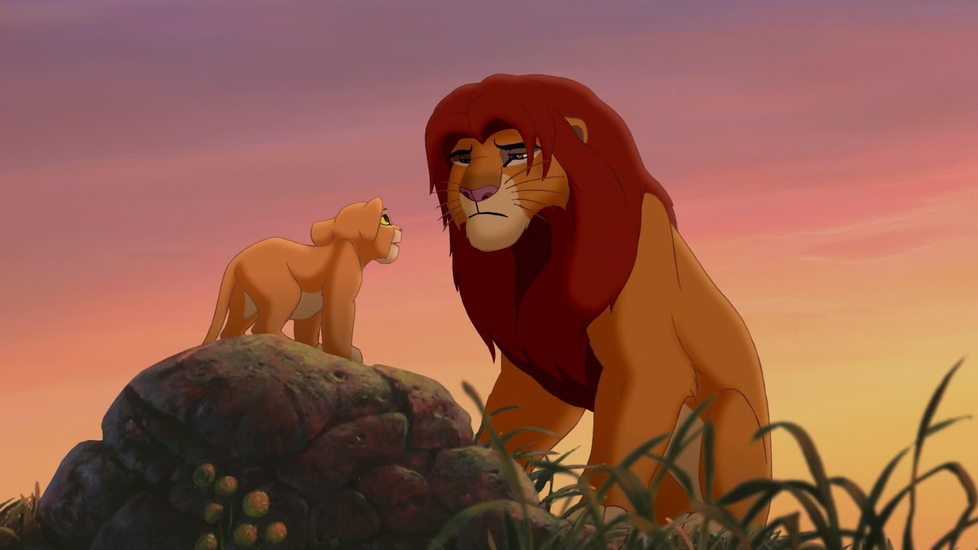 the lion king symbolics essay Lion: lion, large, powerfully built cat that is second in size only to the tiger the proverbial 'king of the beasts,' the lion has been one of the best-known wild animals since earliest times.