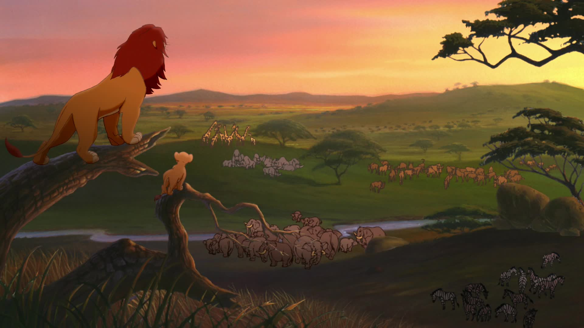 the lion king s inspiration