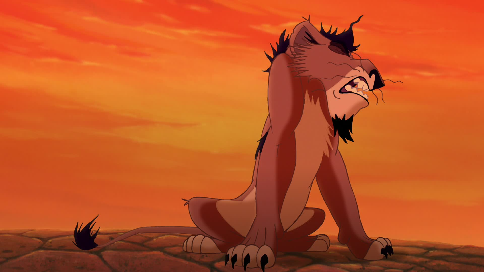 the cub at the end of the lion king