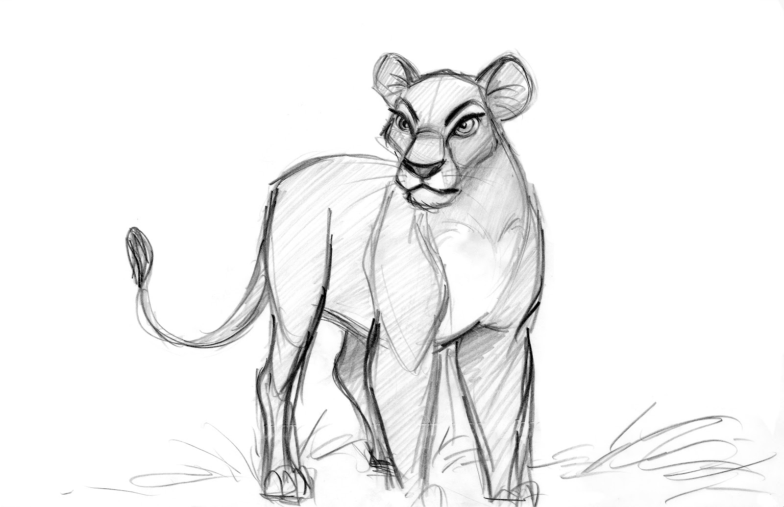 13 best lion king images on pinterest disney sketches drawing