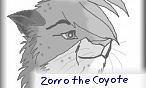 Zorro the Coyote