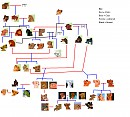 The lion king family tree - unfinished