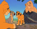 Nala, Fluffy and her cubs