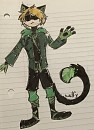 Chat noir redesign
