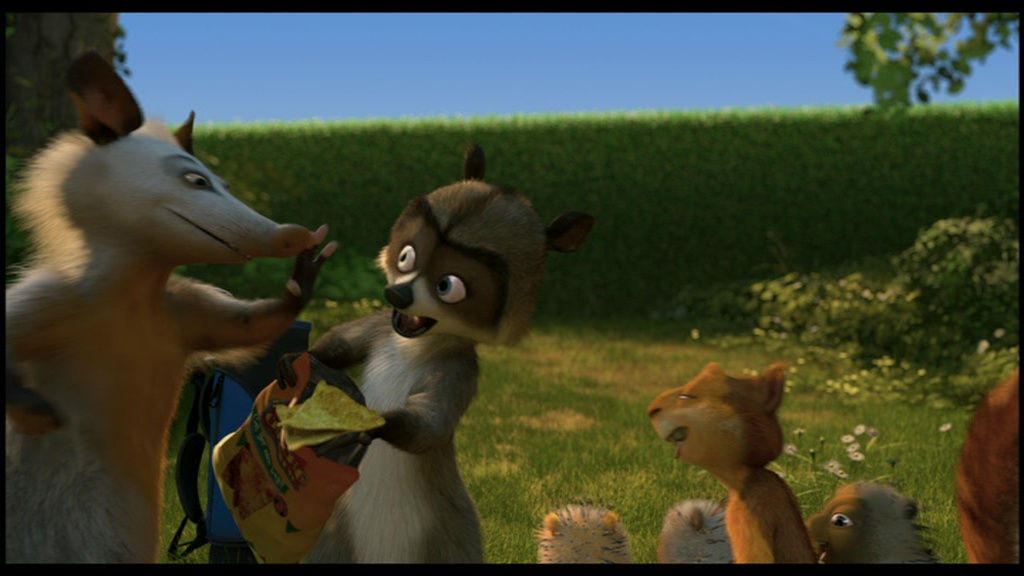 Over the hedge essay