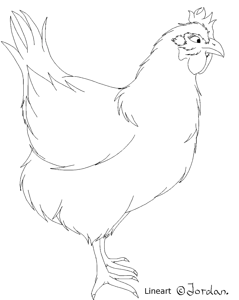 Line Drawing Chicken : Fanart jordan chicken lineart