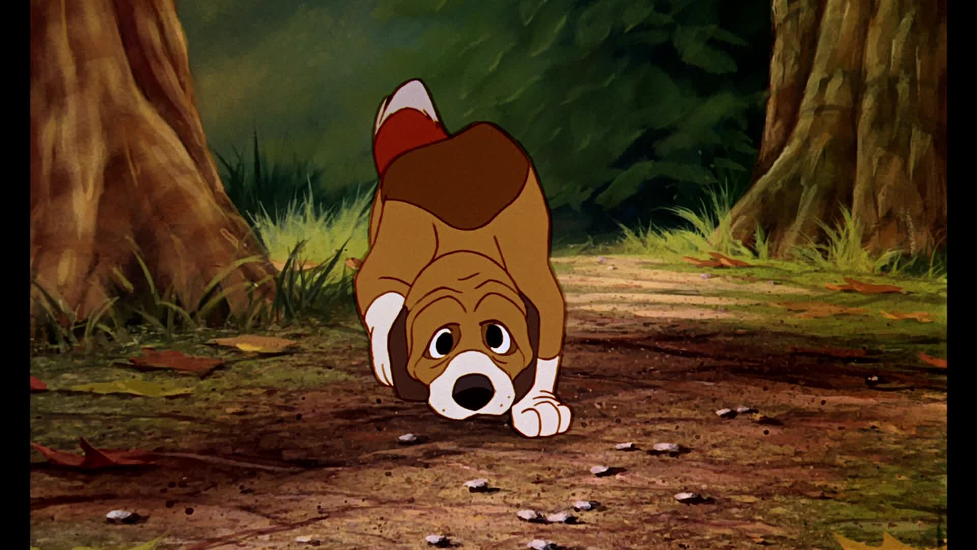 Fox and the Hound screenshots © The Fox and the Hound
