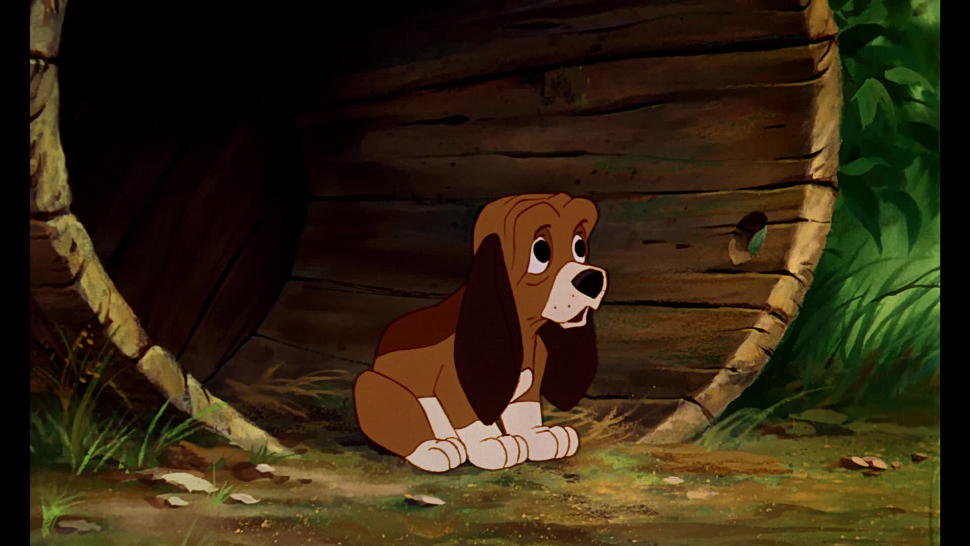 The Fox and the Hound Characters list