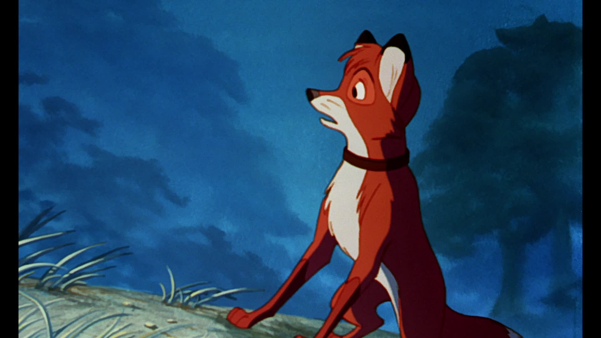 the fox and the hound in the Blu-ray + digital hd re-release with the fox and the hound 2 disc is the same as 2011 release january 2 , 2018 blu-ray + dvd + digital hd re-release with the fox and the hound 2 discs are the same as 2011 release.